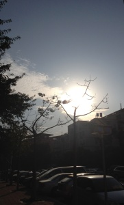 Beautiful winter afternoon sun in Jimei